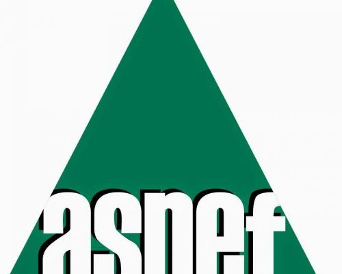 logo_ASNEF
